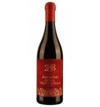 Amarone della Valpolicella '288 Red' Limited Edition DOCG  - 2013 – 0.75 l – Terre di Valgrande